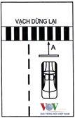 Những lưu ý thi sát hạch lái xe B2 2015